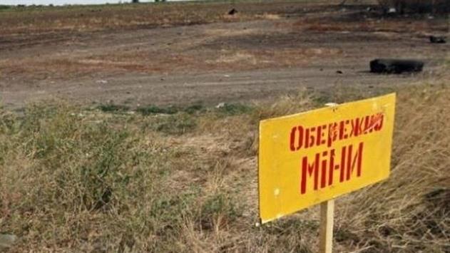 В Донецкой области 34-летняя женщина подорвалась на растяжке