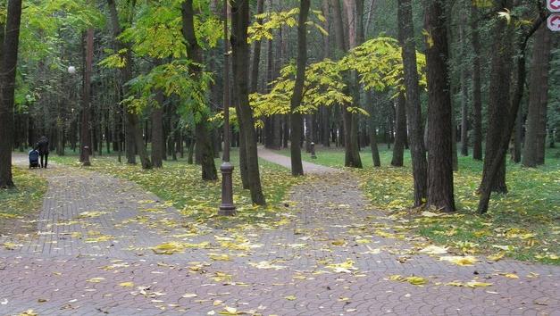 В Беларуси осадков не ожидается
