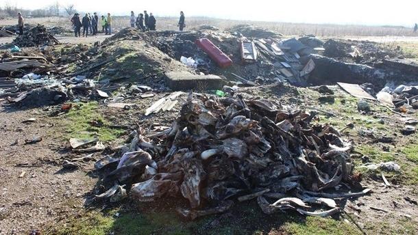 В Симферополе оштрафовали около 400 человек за мусорные свалки