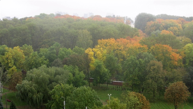 Белгидромет: до конца недели будет дождливо и холодно