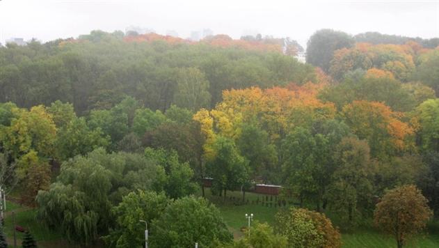 В понедельник на большей части Беларуси дожди