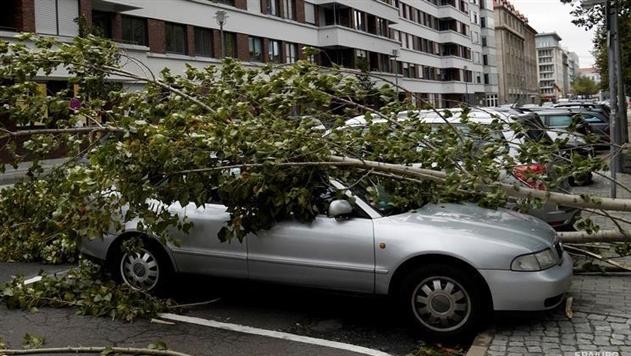 В Германии ураган унес жизни как минимум семи человек