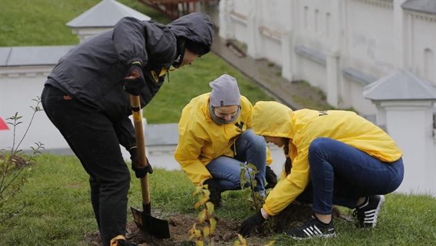 В Минске волонтеры высадили более 300 деревьев и кустарников