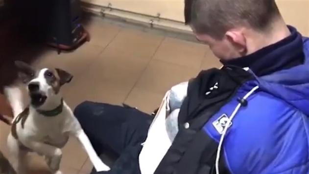 На границе с Россией задержали украинцев с 5 кг марихуаны