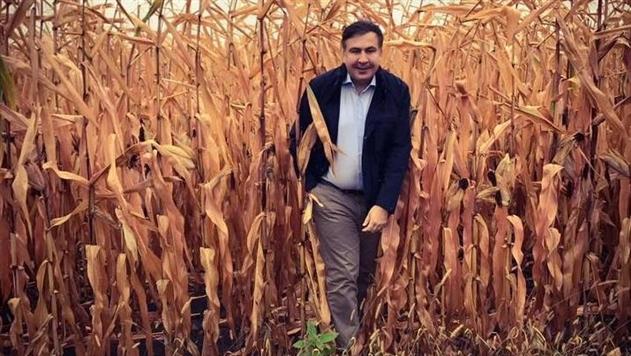 Саакашвили разрешили легально находиться в Украине