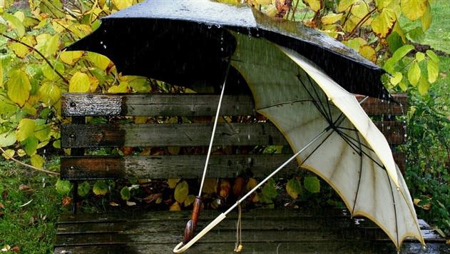 В Беларуси сохранится дождливая погода