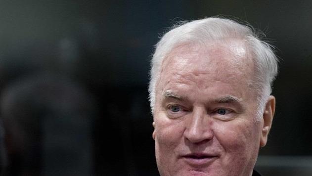 В ООН приговор Младичу назвали