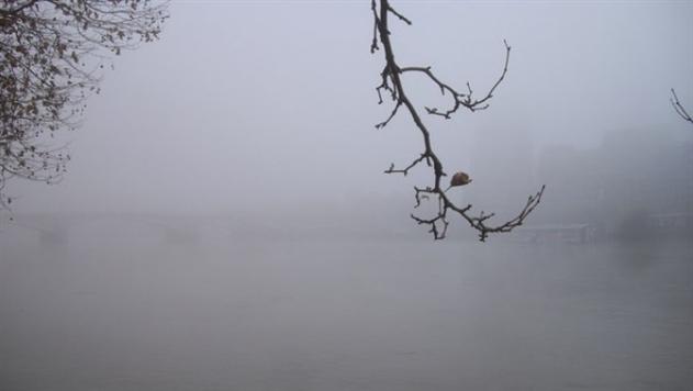 В Беларуси из-за туманов объявлен оранжевый уровень опасности