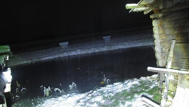 В Полоцком районе 6-летняя девочка утонула в пруду во дворе дома