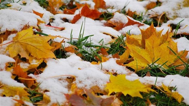 В Беларуси ожидается мокрый снег