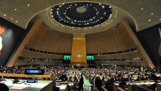 ООН приняла резолюцию о перемирии на время Олимпиады