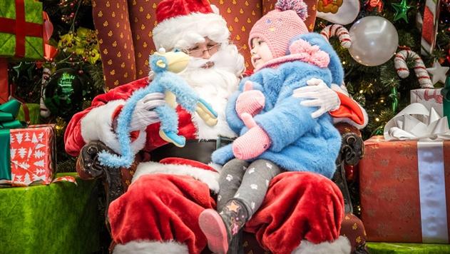 В Минске откроют резиденцию Санта-Клауса с живым оленем