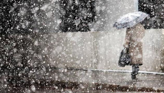 Прогноз погоды: в Беларуси сильный ветер и осадки