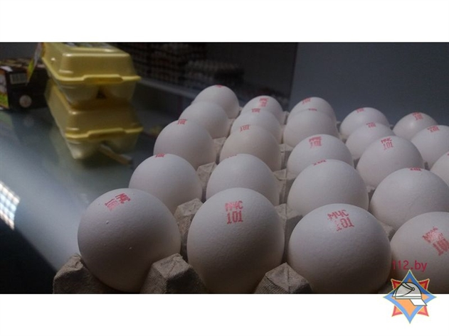Фото: птицефабрика в Городке выпустила яйца с телефоном МЧС