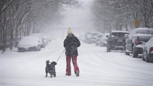 В Украине непогода обесточила 29 населенных пунктов