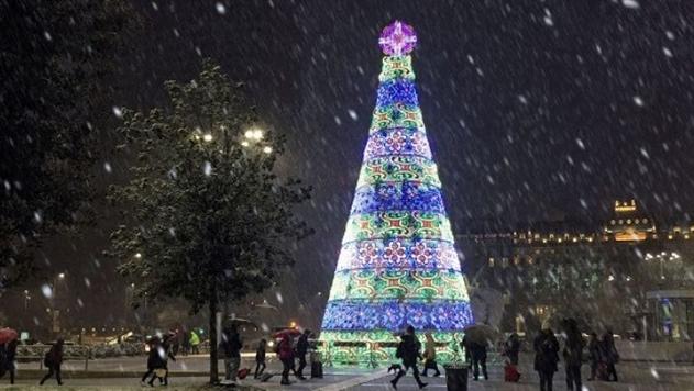 Беженец из Африки попытался снять крест с рождественской ели в Милане