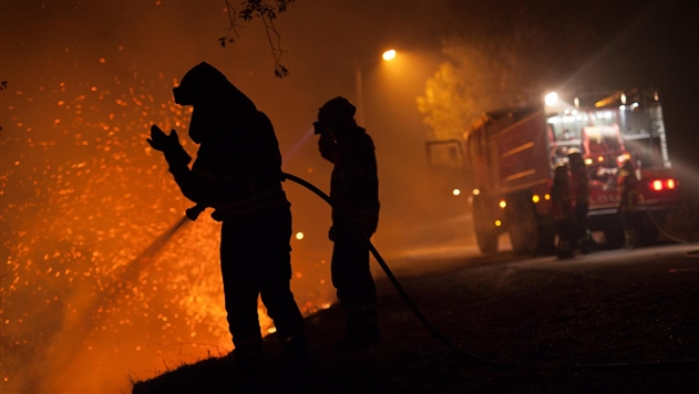 В Украине за год произошло 79 000 пожаров